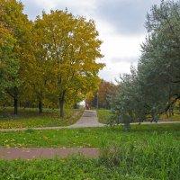 Осень :: Анатолий Цыганок