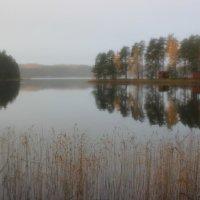 Одно из 56 000 озер Финляндии :: Марина Домосилецкая