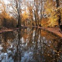 Осенний этюд. Новокузнецк :: Павел Сухоребриков