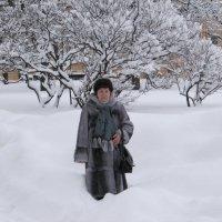Хочу такую зиму! :: Вера Щукина