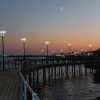 Набережная Лимасола ночью :: Natali