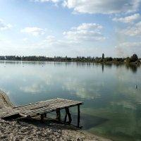 У реки. :: Николай Сидаш