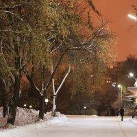 Парк вблизи университета УрГУПС :: Валерий Павлов