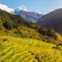 Утро в Гималаях...Непал! :: Александр Вивчарик