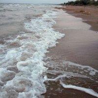Пляж :: Вера Щукина