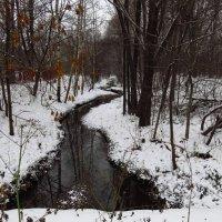 Зима в ноябре. Мне нравится: не в мае же! :: Андрей Лукьянов
