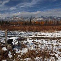 Тункинская долина готовится к зиме... :: Александр Попов