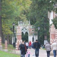Фигурные  ворота. :: Виталий Селиванов