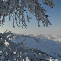 все такое снежное вокруг :: Елена Рекк