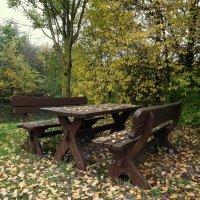 Осень на дворе.. :: Эдвард Фогель