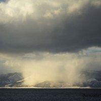 так идет снег :: василиса косовская