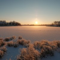 Мороз и солнце!!! :: Олег Кулябин