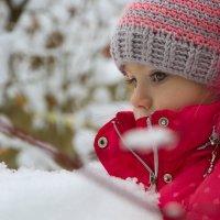 Сказочная зима :: Юля Колосова