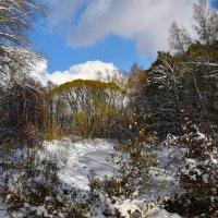 Осенний снежок. :: Валерий Медведев