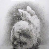 Котенок - рисунок карандашом :: rv76