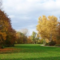 """""""Осень в рощах нежна, словно бархат, Осень в рощах манит и пьянит ..."""" :: Galina Dzubina"""