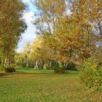 """""""И вновь чудо-осень плывет в вышине, Янтарные слёзы роняя ..."""" :: Galina Dzubina"""