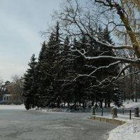 Мороз и солнце... :: tipchik