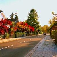 Куда уходит осень... :: Nina Yudicheva