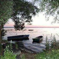 На Плещеевом озере :: елена