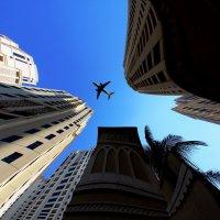 Небо...Самолет..Дубай... :: Рустам Илалов