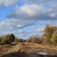 Степные дороги :: Виктор ЖИГУЛИН.