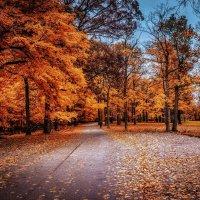 Осенние этюды :: Gene Brumer
