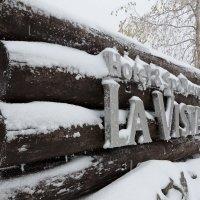Зима пришла :: Tatiana Belyatskaya