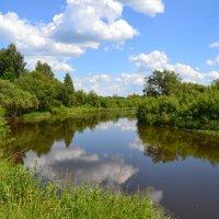 Река Вига :: Елена Майорова