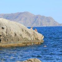 Отдых на море-389. :: Руслан Грицунь