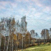 Тихая осень :: Владимир Безбородов