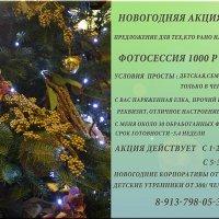 скоро новый год :: Yulia Golub
