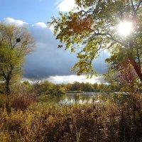 Тучи, солнце, октябрь... :: Маргарита Батырева