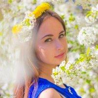 Весна :: Альбина Васильева