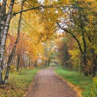 Осень в пасмурный день 8 :: Виталий