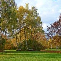 ...По лесам гуляет осень. Краше этой нет поры… :: Galina Dzubina