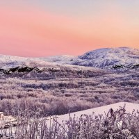 Морозное утро :: Oleg Akulinushkin
