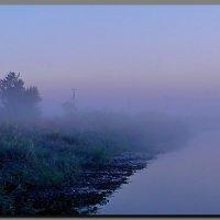 рассвет.  туман. :: Ivana