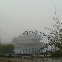 Туман :: наталия