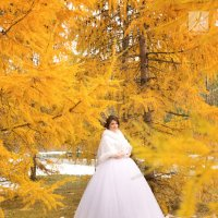 золотая осень :: Катерина Кучер