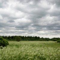 Этот ветер разорвал небо в клочья... :: Юлия Фотолюбитель