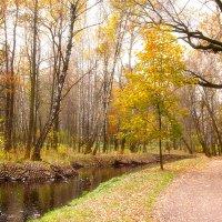 Осенний парк :: Александр Каримов