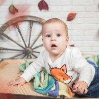 Чудесный малышонок )) :: Мария Дергунова
