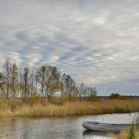 Золотой пейзаж :: Belka Beshen