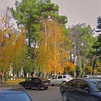 Осень на ул. Первомайская :: Валерий Дворников