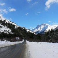 Зимний пейзаж :: Антонина Петлевская