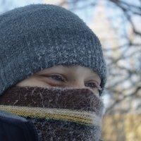 Мороз :: Юлия Кожевникова