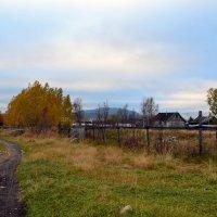 Осень в деревне :: Ольга