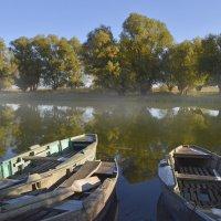 осень.. утро на реке :: Алена Рыжова