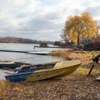 Поздняя осень :: Александр Клочков